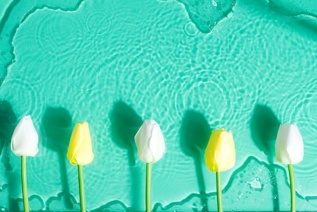 Cadre de tulipes sur une eau sous verre