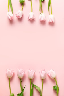 Cadre de tulipes roses sur fond rose.