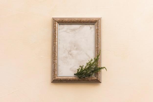 Cadre vide avec une branche verte