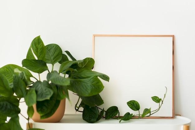 Cadre vide à côté d'un décor à la maison de plante en pot
