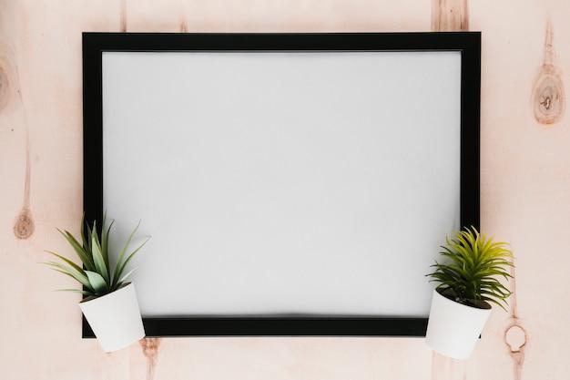 Cadre vide noir avec des plantes