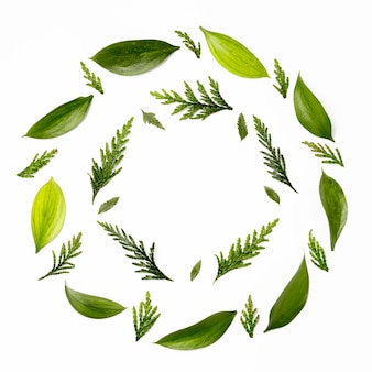 Cadre vue de dessus avec des feuilles vertes