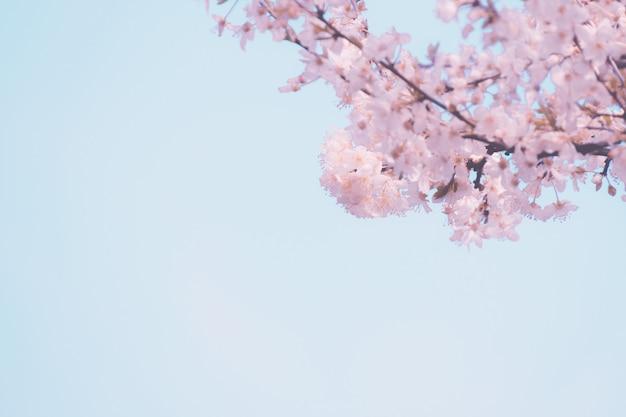 Cadrer le ciel