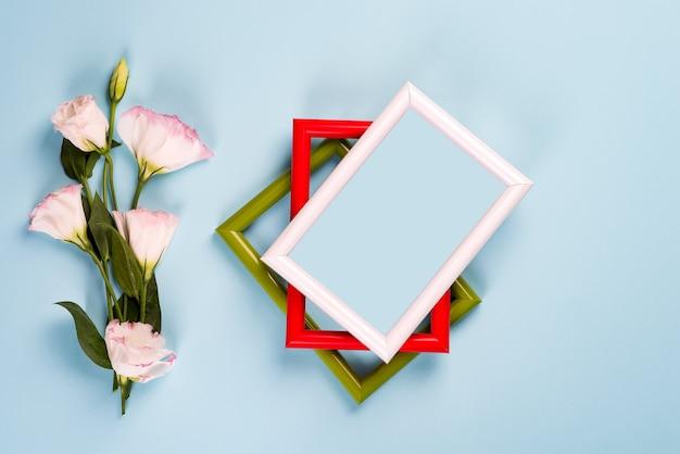 Cadres de couleur vides et fleurs eustoma sur la surface du papier bleu