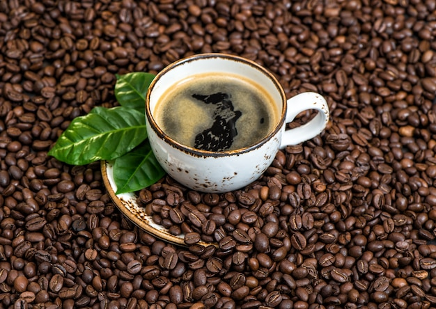 Café noir avec des feuilles vertes fond de grains de café
