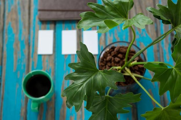 Café et plante en pot sur table en bois