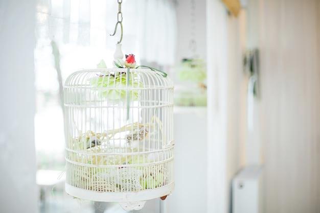 Cage en métal ornée de blanc vintage à la réception de mariage