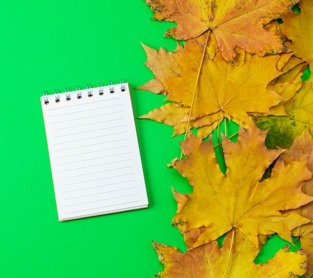 Cahier ouvert aligné avec des pages blanches