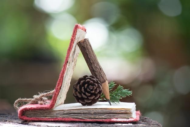 Cahier en vieux papier, crayon en bois et fleur de pin séchée dans la nature.
