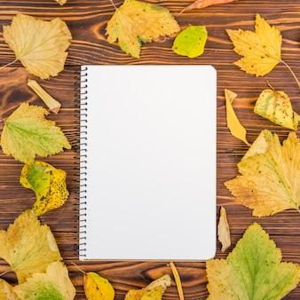 Cahier vue de dessus entouré de feuilles d'automne
