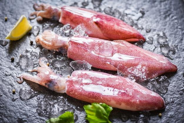 Calamars crus frais sur glace au citron