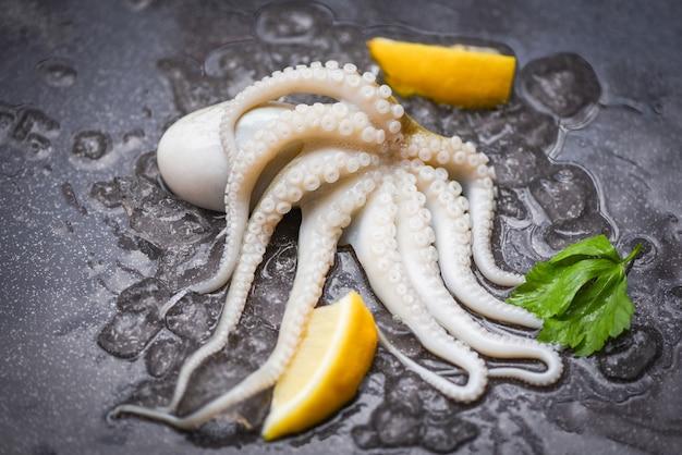 Calamars crus frais avec glace et citron