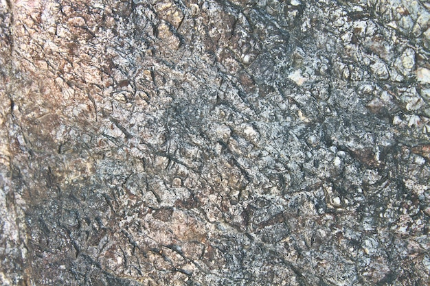 Calcaire texturé