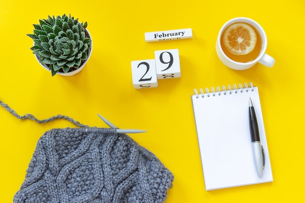 Calendrier le 29 février. bloc-notes de thé en tissu succulent et gris sur les aiguilles à tricoter