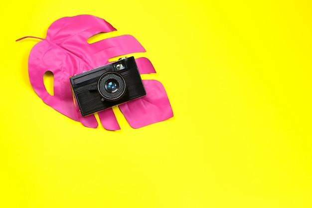 Caméra sur feuille tropicale sur jaune