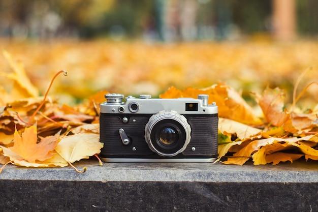 La caméra se trouve sur le trottoir dans un parc d'automne avec des feuilles jaunes