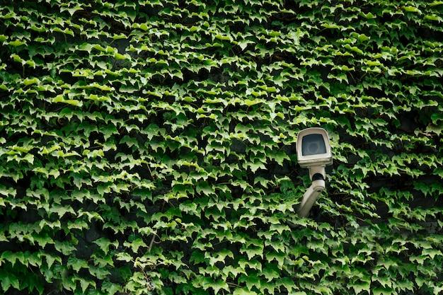 Caméra de sécurité sur vert