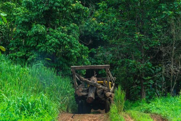 Camions pour l'industrie forestière.