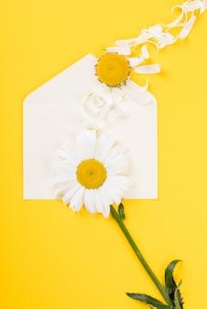 Camomille sur fond de papier jaune.