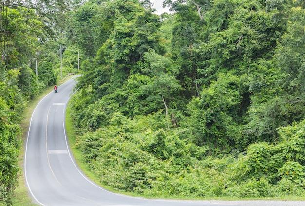Campagne de la route forestière
