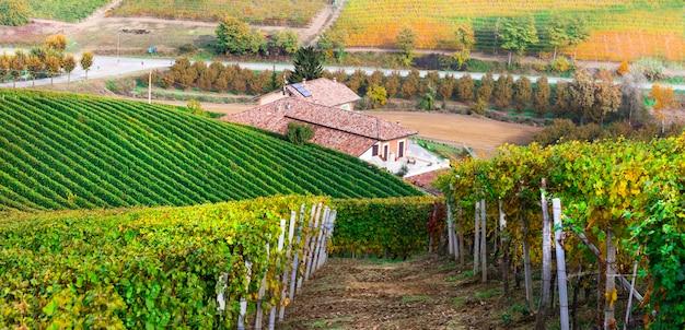 Campagne toscane, célèbre région viticole d'italie