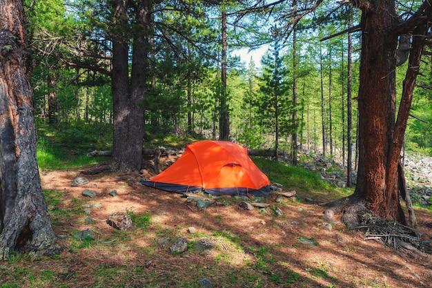 Camper dans la forêt. tente orange dans une forêt de conifères de montagne. calme et détente dans la nature.