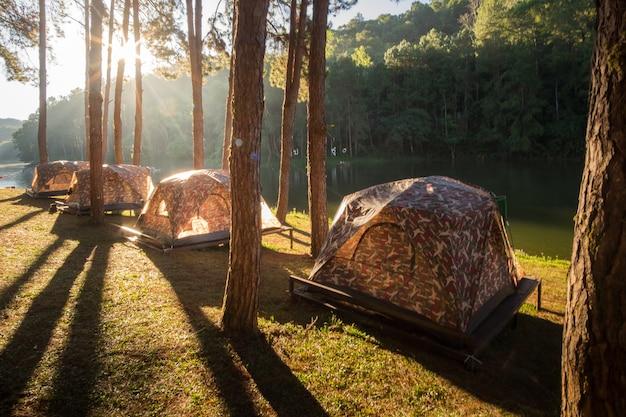 Camping du matin