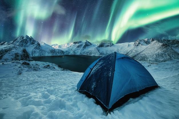 Camping tente bleue sur la colline enneigée avec aurora borealis dansant sur la chaîne de montagnes de l'île senja