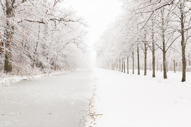 Canal d'eau à travers la forêt enneigée