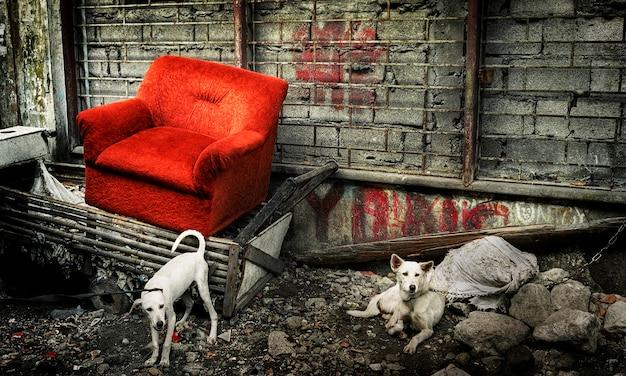 Canapé abandonné à manille.