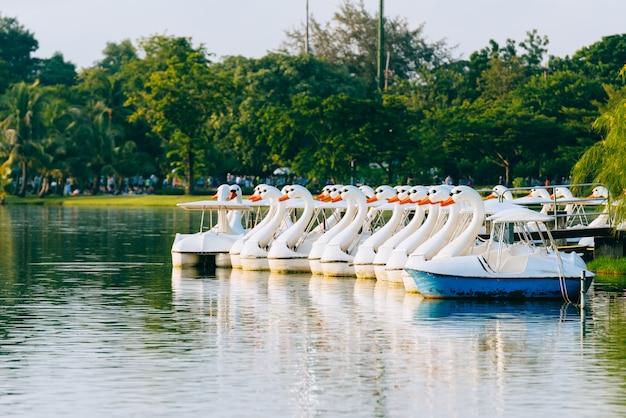 Canard bateaux sur l'étang le matin avec la lumière du soleil.