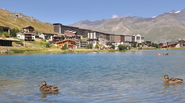 Canards sur le lac de tignes en été