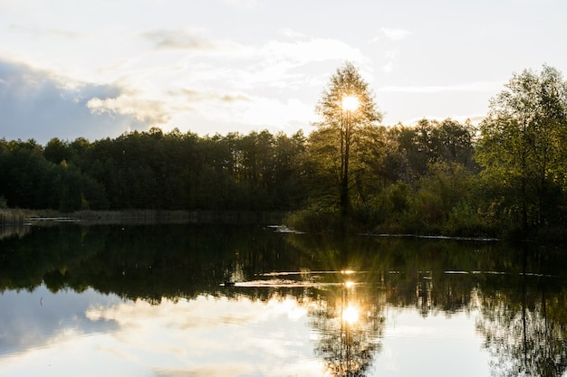 Les canards nagent au lever du soleil tôt le matin sur le lac bleu à kazan. russie. le lever du soleil, l'herbe, les arbres et le lac turquoise.