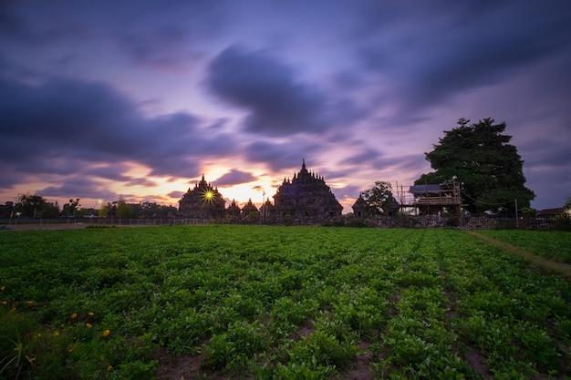 Candi plaosan avec ciel dramatique dans l'après-midi. le complexe plaosan est un temple célèbre, l'un des temples bouddhistes situés dans le village de bugisan, district de prambanan, klaten, java central - indonésie.