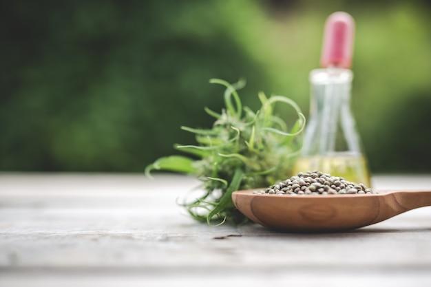Cannabis, graines de cannabis, huile de cannabis placé sur un plancher en bois avec un arbre vert en arrière-plan.