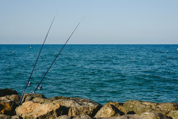 Cannes à pêche fixées sur les rochers près de la côte