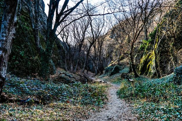 Canyon de birtvisi en géorgie