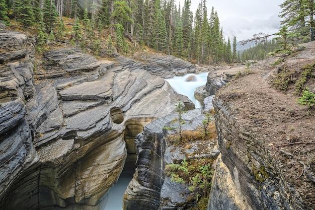 Canyon mistaya sinueux distinctif rivière mistaya parc national banff albertacanada