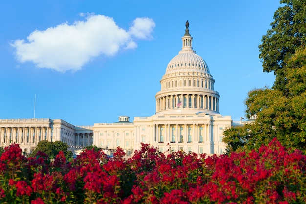 Capitole à washington dc congrès des états-unis