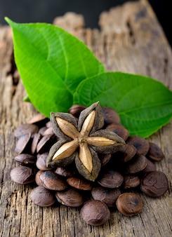 Capsule séchée fruit de sacha-cacahuète inchi sur bois