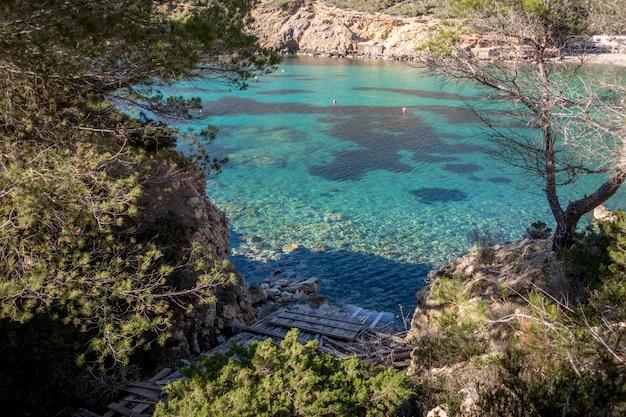 Capture en grand angle d'un beau lac dans les montagnes entouré d'arbres par une journée ensoleillée