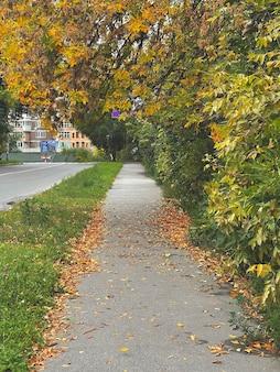 Capture verticale d'un trottoir avec des feuilles oranges tombées à l'automne dans la ville