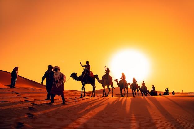 Caravane de chameaux au coucher du soleil dans le désert du sahara.