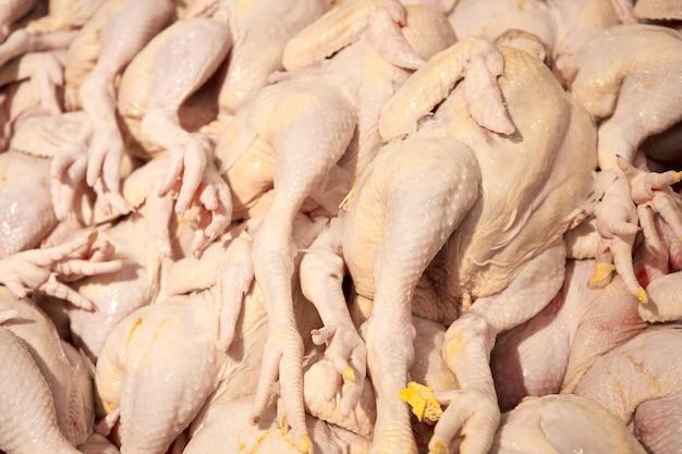 Carcasses plumées de poulets sur le comptoir d'une épicerie.