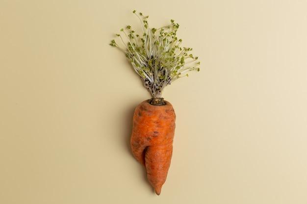 Carotte laide à la mode avec des sommets du concept créatif de micro-herbes.