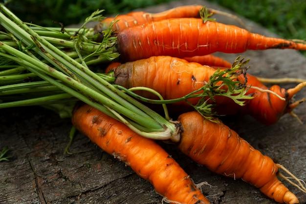 Carottes juteuses mûres avec dessus sur une vieille table en bois dans le jardin. vitamines et alimentation saine. fermer.