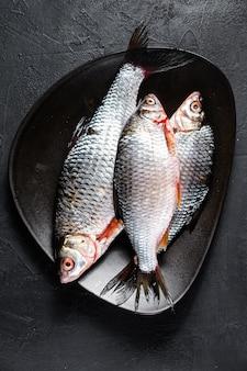 Carpe carassin cru sur une plaque noire. poissons biologiques de rivière. fond noir. vue de dessus
