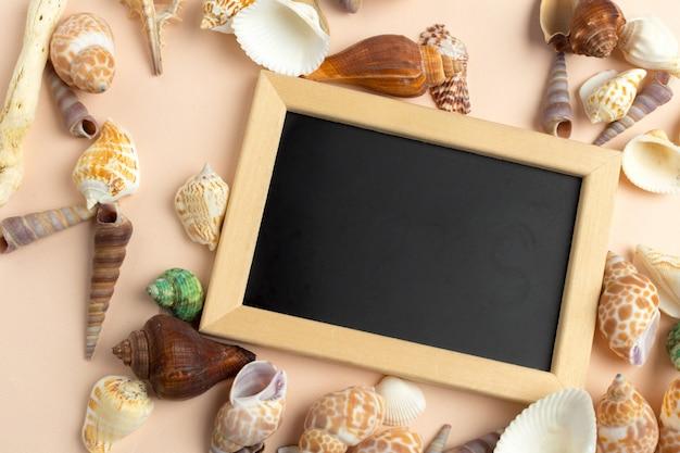Carte avec coquillage. salut de la plage