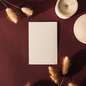 Carte de feuille de papier vierge avec herbe de queue de lapin lapin avec ombre du soleil