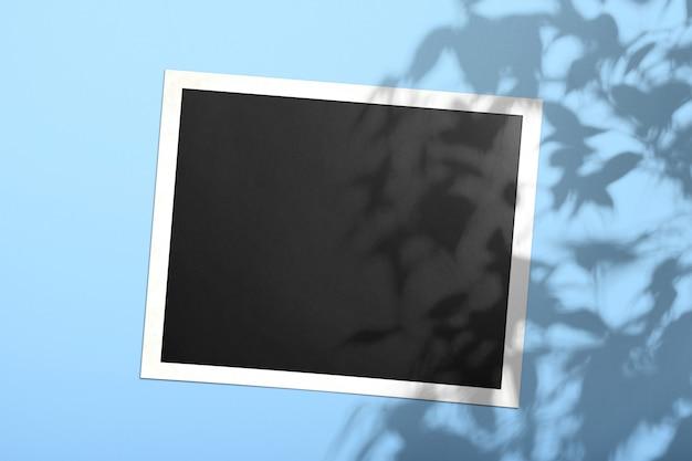 Carte-photo blanche sur un mur de couleur bleu safran avec une ombre d'un arbre